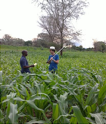 Fieldwork in Malawi