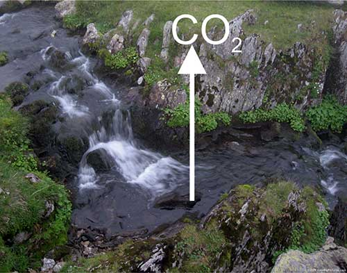 Channel wetted width for improved prediction of carbon dioxide evasion from streams